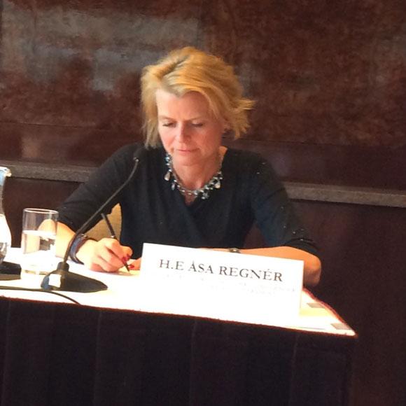Åsa Regnér talade på FN:s toppmöte för kvinnors rättigheter