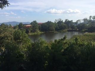 Efter dessa intensiva dagar med projektbesök gick färden vidare mot det gröna och lugna Selva Negra, (den svarta djungeln) där vi bland annat fick lära oss mer om ekologisk kaffeodling.